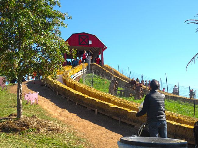 slides_coxfarms